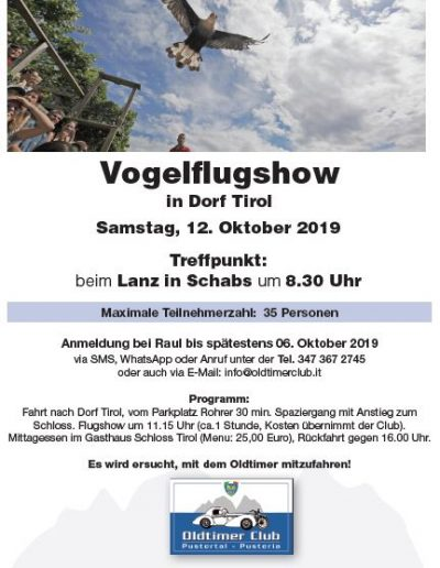 Vogelflugshow
